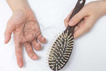 Công dụng hà thủ ô với chứng rụng tóc